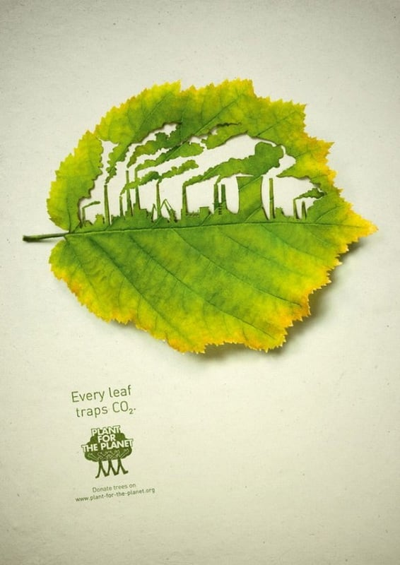 The Advertising Campaign for Plant for the Planet -advertising campaign