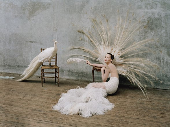 jennifer-lawrence-tim-walker-w-magazine-03.jpg