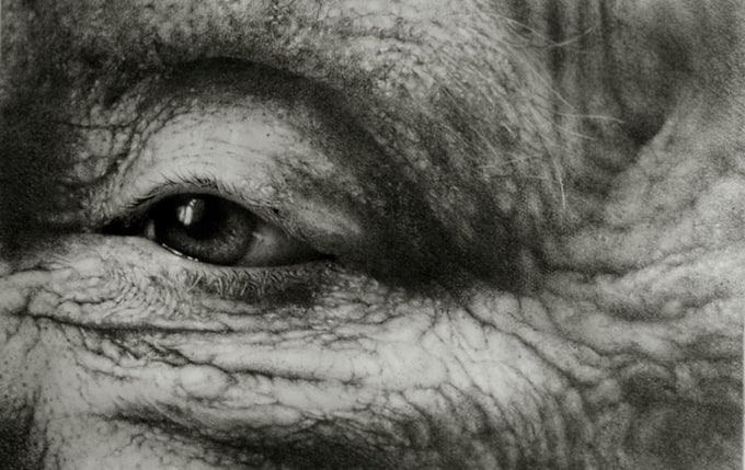 Realistic Pencil Drawings by Armin Mersmann
