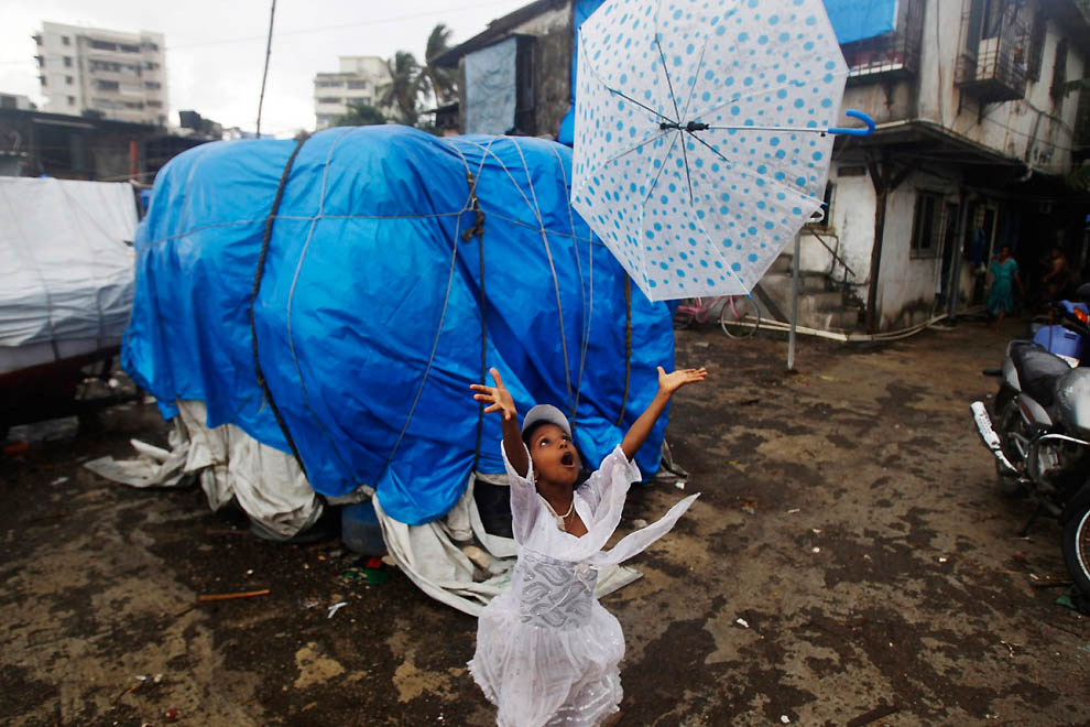 Umbrellas from Around the World