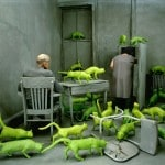 Photographer Sandy Skoglund