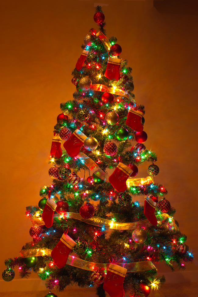 Christmas-Trees-Decorated-With-Light-