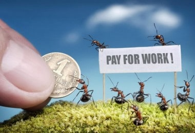 26 miniatures from the life of ants by Andrei Pavlov