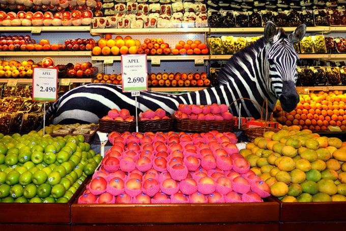Garden Fresh by Agan Harahap 1 - Animals in the Supermarket