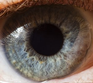 Macro photography of Human Eyes -