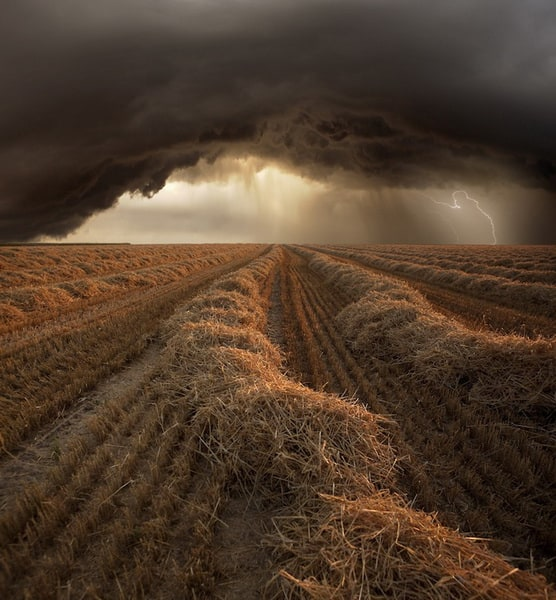 Storm Fields by Franz Schumacher -storm, nature, landscape