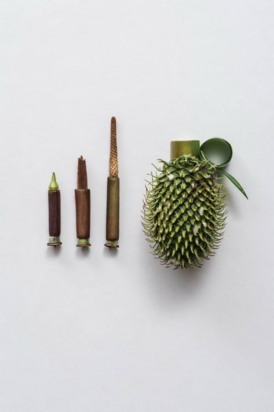 Weapons-made-of-Plants3-640x960