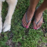 """Feet & Paws"" by Alex Beker"