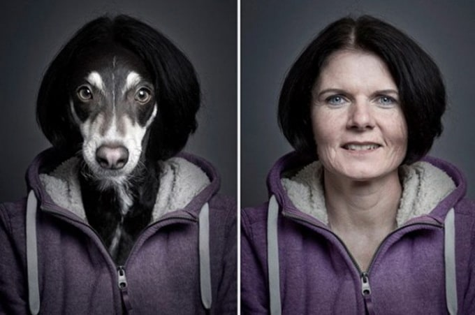 """Underdogs"" by Sebastian Magnani -dogs"