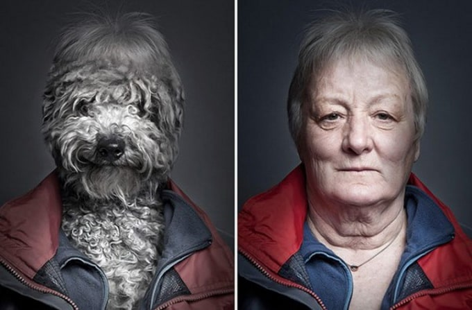 Dogs-Dressing-Up-Like-Their-Owners2-640x425