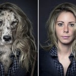 """Underdogs"" by Sebastian Magnani"