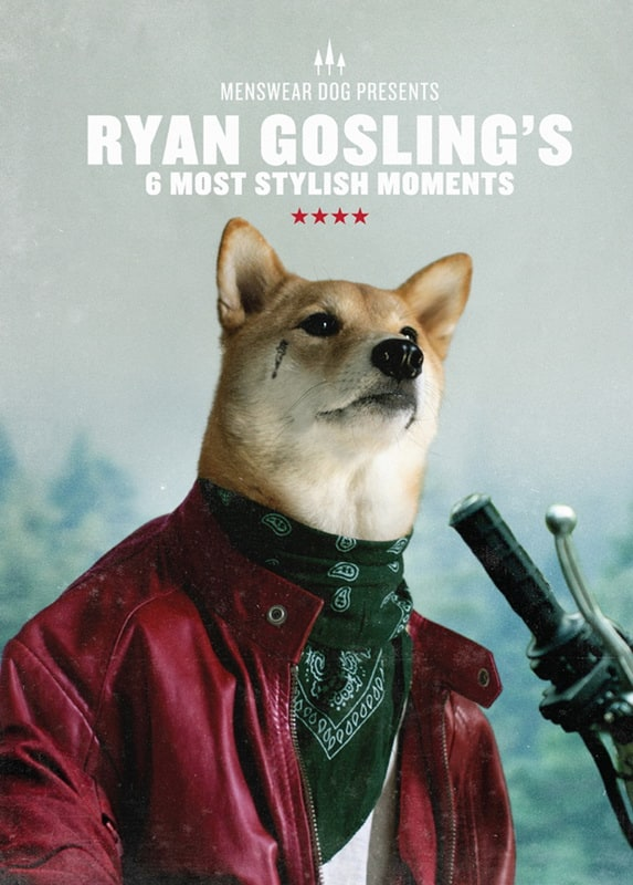 A Dog's Guide to Being a Man -dogs, breaking bad
