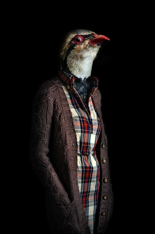Fashionably Dressed Animals Photographed by Miguel Vallinas -