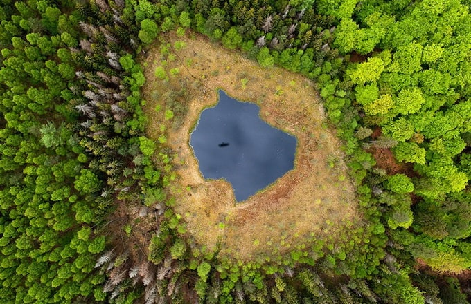 Aerial Photos of Poland by Kacper Kowalski -photographer, forest, aerial