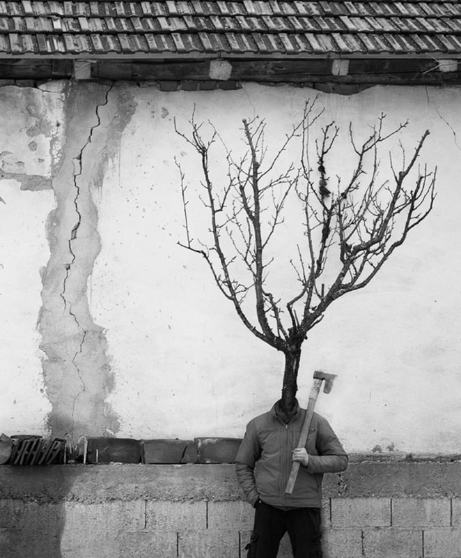 """People&Trees"" by Marko Prelic -photographer"