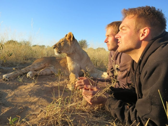 Life With The Lions-1