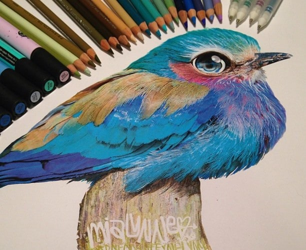 Hyperrealism with Pencil and Ink by Karla Mialynne