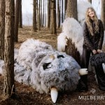 A Forest Fairytale for Mulberry