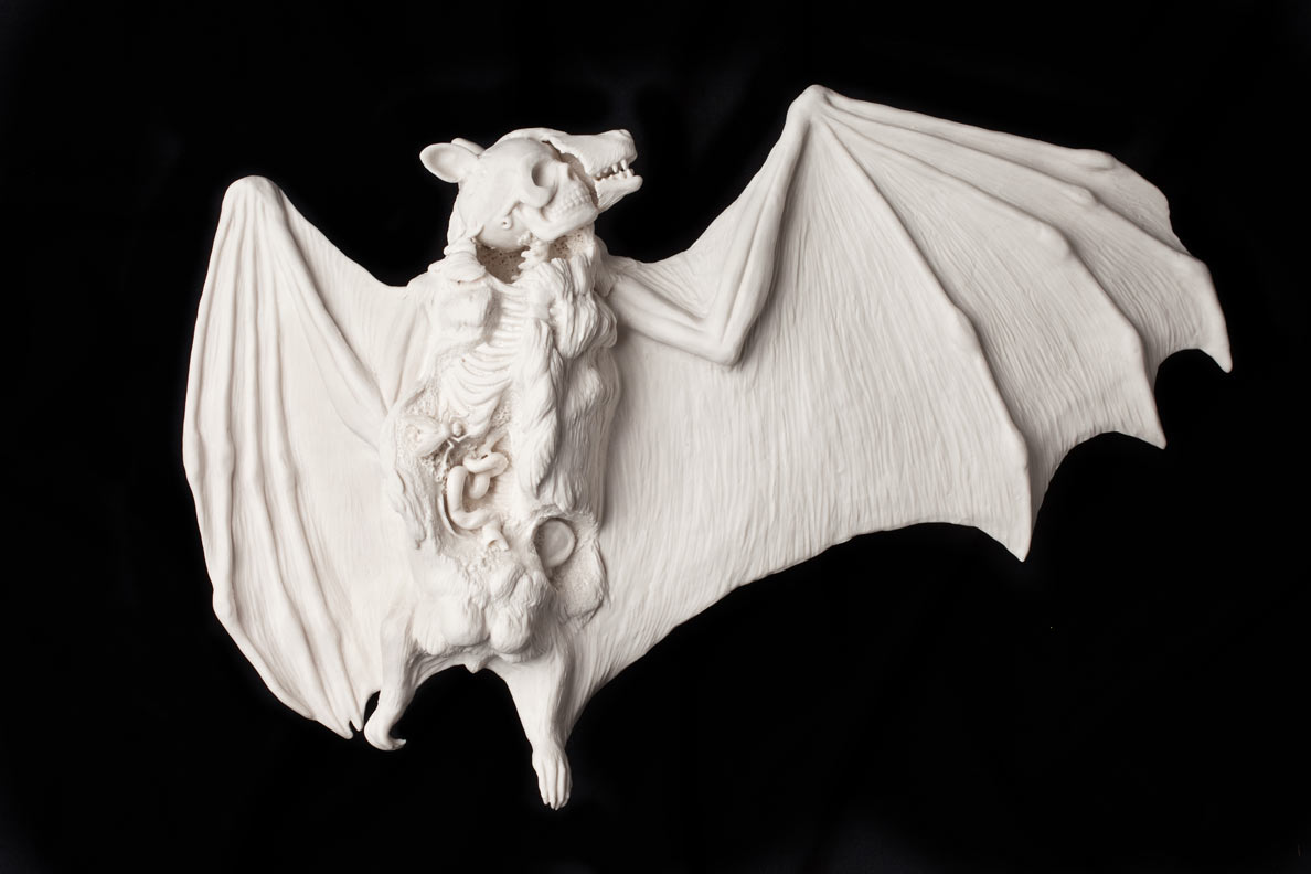 kate_macdowell_bat_black