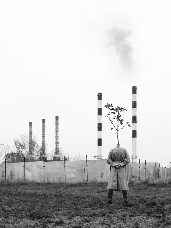 The Tree people of Marko Prelic -photography