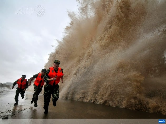 Best AFP Pictures of 2013 -