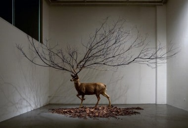 Outstanding Installations by Myeongbeom Kim