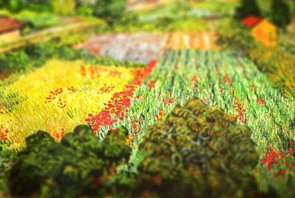 tilt-shift-van-gogh-field-with-poppies