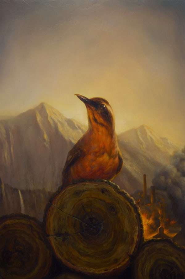 MartinWittfooth12