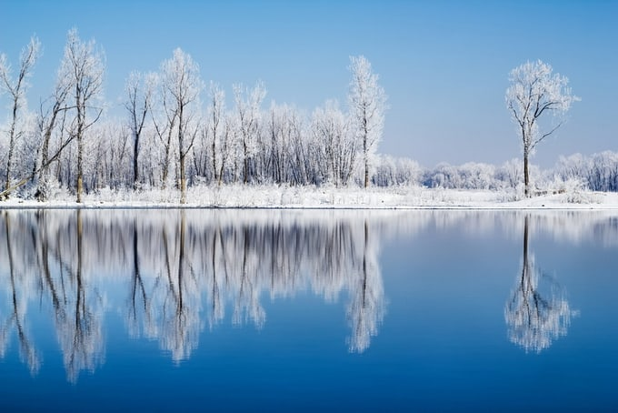 Frosty Reflections