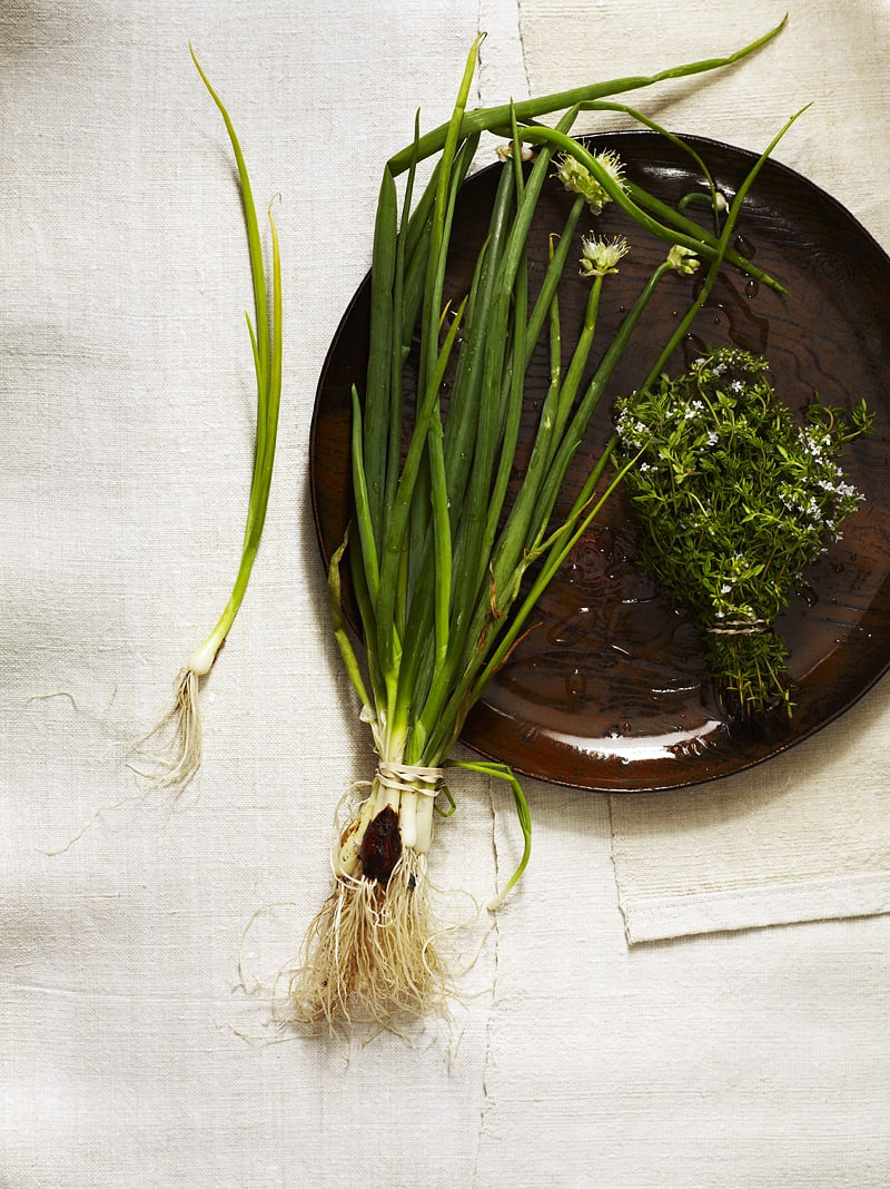 onions-and-thyme_0010