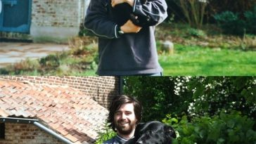 Then and Now Pictures of Animals growing up -pets, dogs