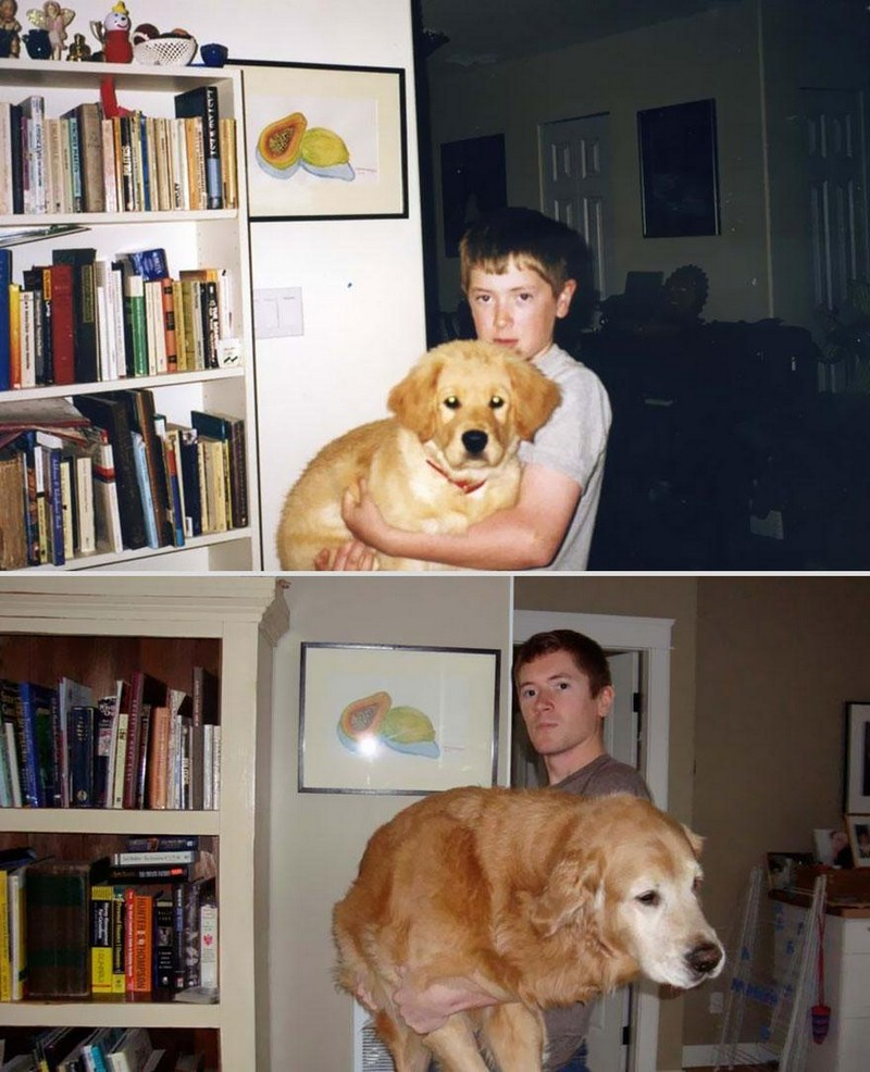 27 Adorable Before And After Photos Of Pets Growing Up -puppy, dogs, cute, cats, animals