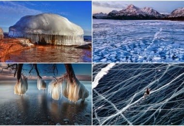 The 30 Most Amazing Photos Of Frozen Things In Honor Of The Coldest Morning Of The 21st Century