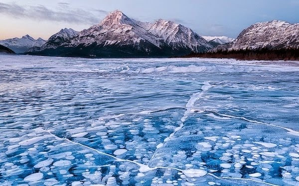 Frozen+methane+bubbles+in+Alberta,+Canada.+-+The+30+Most+Amazing+Photos+Of+Frozen+Things+In+Honor+Of+The+Coldest+Morning+Of+The+21st+Century