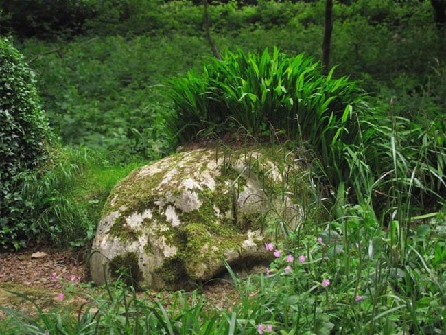 The_Lost_Gardens_of_Heligan_3
