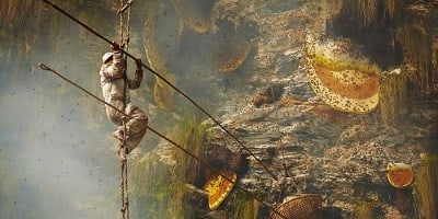 Andrew Newey's Striking Photographs of  Ancient Traditional Honey Hunters in Nepal