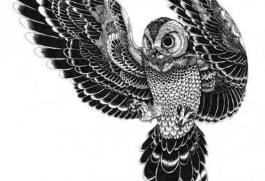 Black and White Drawings of Iain Macarthur