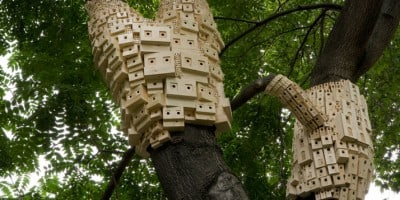 Perfectly Designed Blocks of Birdhouses Wrapped Around Trees