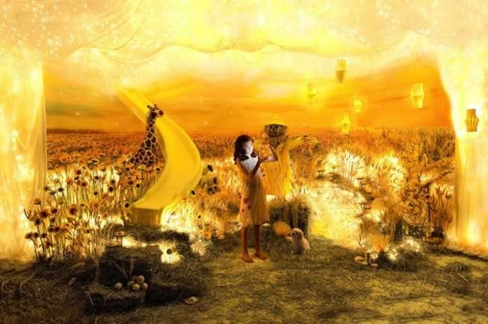 The Color Project by Adrien Broom -