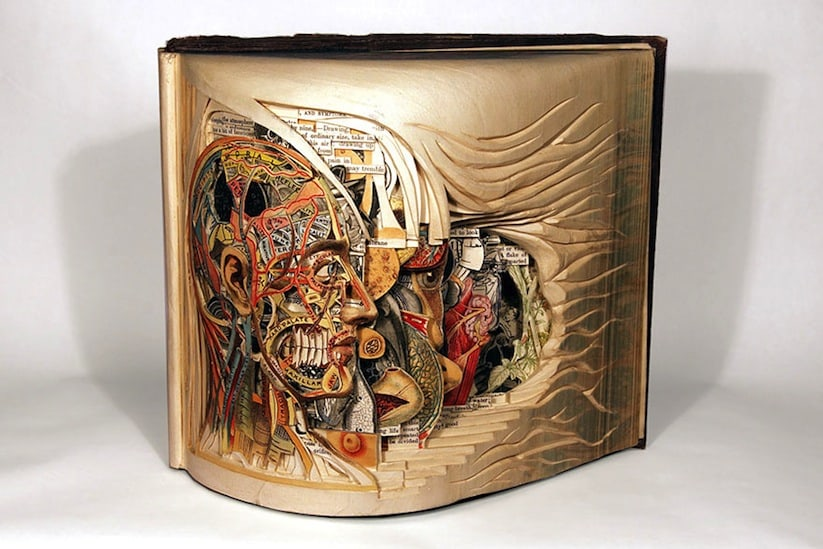 The_Book_Surgeon_Incredible_Book_Sculptures_by_Brian_Dettmer_2014_01