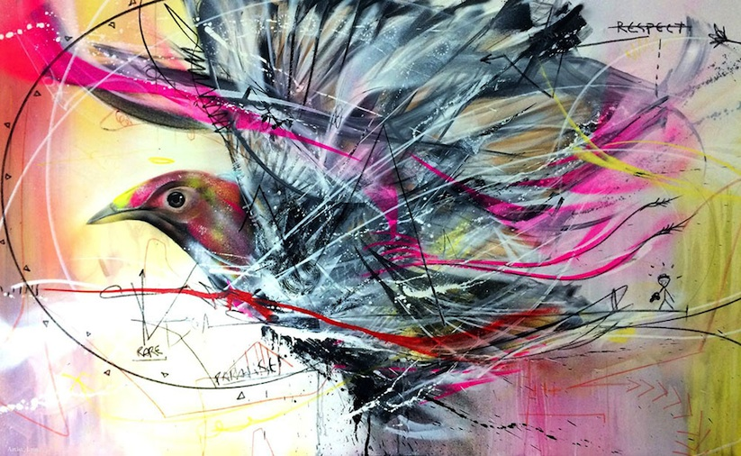 New_Spray_Painted_Birds_by_Artist_L7m_2014_01