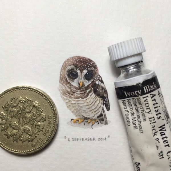 Postcards_for_Ants_Miniature_Watercolor_Paintings_by_Lorraine_Loots_2014_02