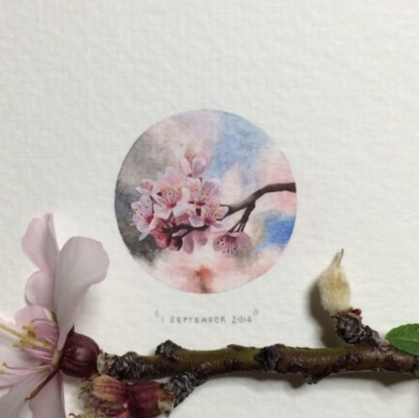 Postcards_for_Ants_Miniature_Watercolor_Paintings_by_Lorraine_Loots_2014_05