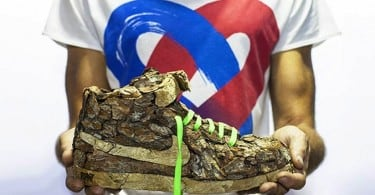 """""""Just Grow It ! – Les Sneakers Végétales"""" by French Artist Monsieur Plant"""