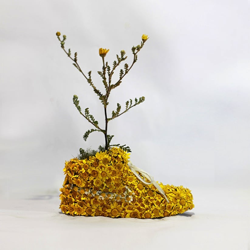 """Just Grow It Les Sneakers Vegetales by French Artist Monsieur Plant 2014 04 - """"Just Grow It ! – Les Sneakers Végétales"""" by French Artist Monsieur Plant"""