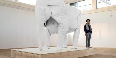 Origami Artist Made Life-Sized Elephant With One Sheet Of Paper