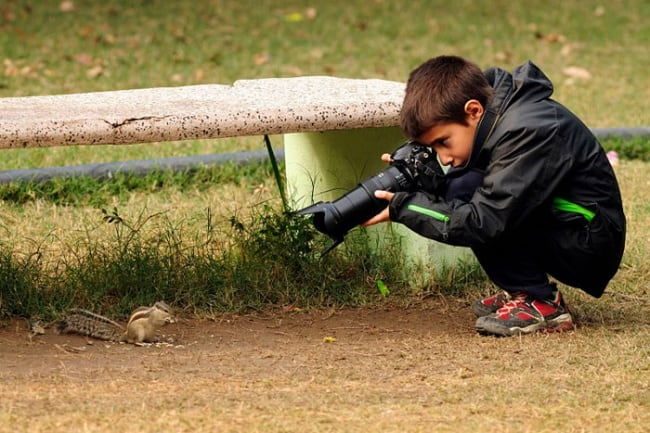 9 Year-Old Wildlife Photographer of the Year -photographer, nature, animals