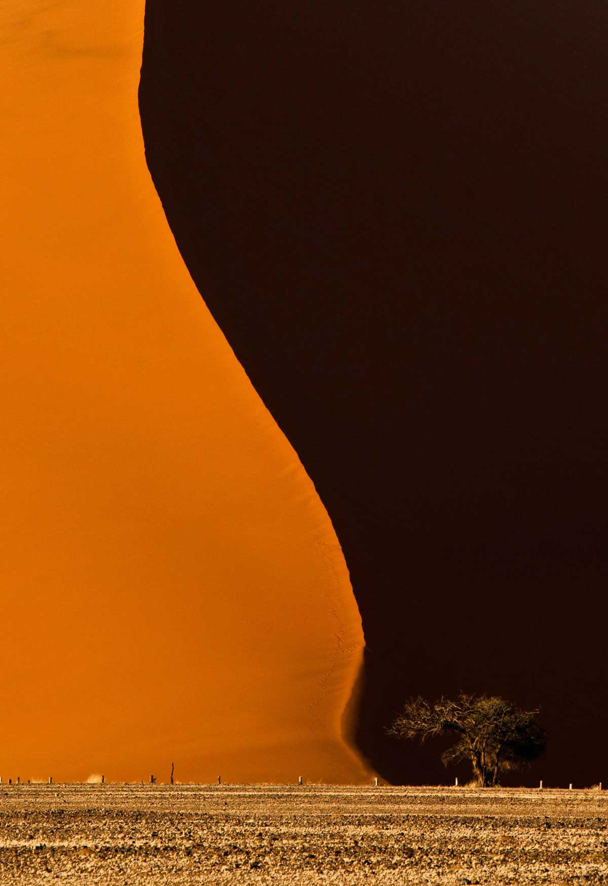 Gigantic sand dune in Namibia