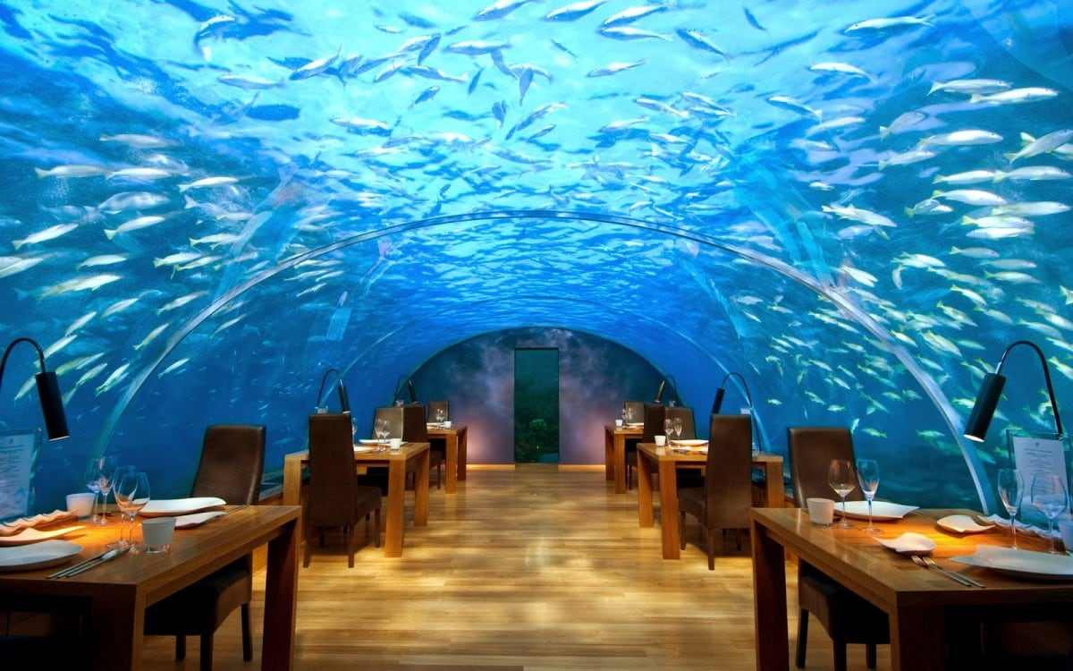Amazing Photos Of An Underwater Restaurant in Red Sea -underwater, restaurant