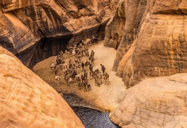 Guelta d'Archei – The Most Famous Permanent Water Source in the Ennedi Region of Chad 5